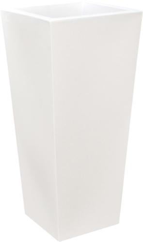 QNS PV bianco perla